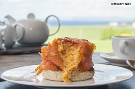 Salmon and eggs (D)